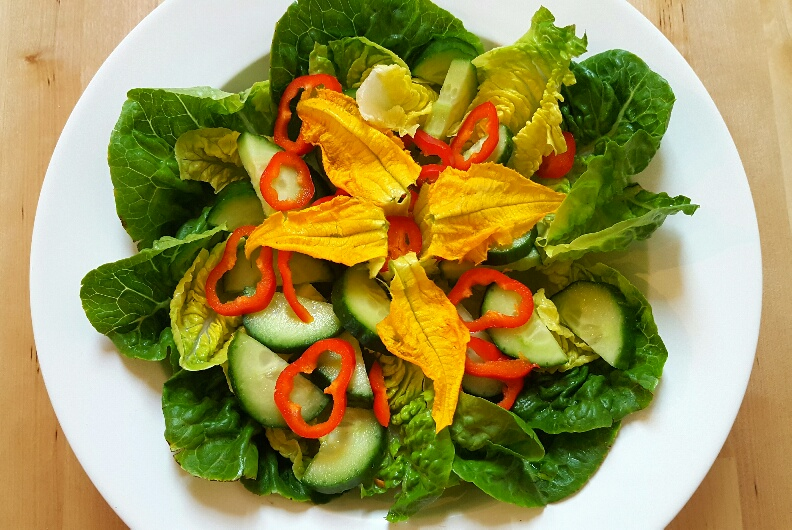 A fresh, crisp garden salad by The Fat Foodie